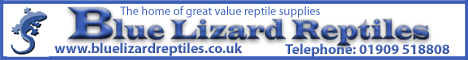 Blue Lizard Reptiles - The Home of Good Value Reptile Supplies