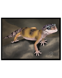 Picture of Creative Chameleon Greetings Card Leopard Gecko
