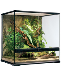 Picture of Exo Terra Glass Terrarium Medium Tall 60x45x60cm