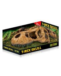 Picture of Exo Terra T Rex Skull