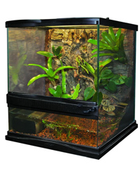 Picture of Zoo Med Naturalistic Terrarium 30 x 30 x 30 cm