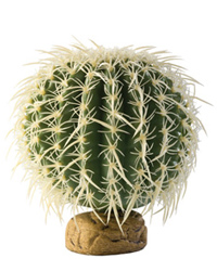 Picture of Exo Terra Barrel Cactus Medium