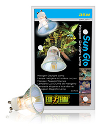 Picture of Exo Terra Sun Glo Halogen Daylight Lamp 35W GU10