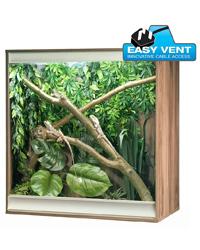 Picture of Vivexotic Viva plus Arboreal Medium Walnut