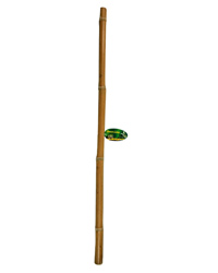 Picture of Lucky Reptile Bamboo Stick 3 cm x 1 Metre
