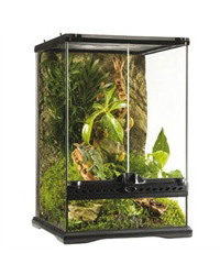 Picture of Exo Terra Glass Terrarium Mini Tall 30 x 30 x 45 cm