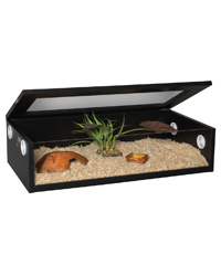 Picture of Monkfield Terranium Black Large 30 Inches