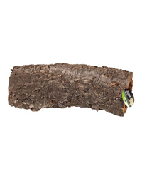 Picture of ProRep Cork Bark Large Tube Long