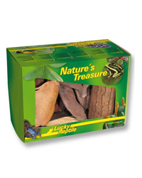 Picture of Lucky Reptile Natures Treasure Decor Box