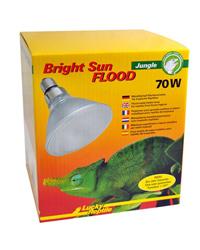 Picture of Lucky Reptile Bright Sun Flood Jungle 70W