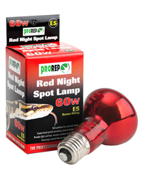 Picture of ProRep Red Night Spot Lamp 60W Edison Screw