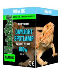 Picture of HabiStat Daylight Spotlamp 100W Bayonet