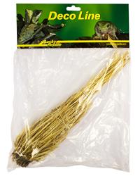 Picture of Lucky Reptile Grass Bush 25-45cm