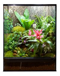 Picture of Zoo Med Naturalistic Terrarium 45 x 45 x 60cm