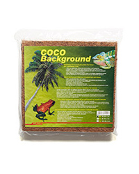 Picture of Lucky Reptile Coco Background 30cm