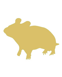Picture of Frozen Gerbil - Pack of 1