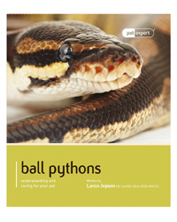 Picture of Pet Expert Ball Pythons