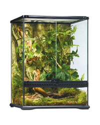 Picture of Exo Terra Glass Terrarium Small Tall 45x45x60cm