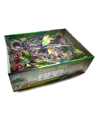 Picture of Lucky Reptile Life Experience Deco Set Mantis