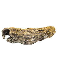 Picture of ProRep Cork Bark Small Tube Short