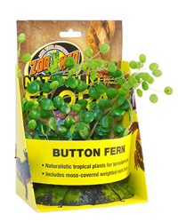 Picture of Zoo Med Button Fern