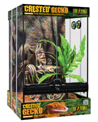 Picture of Exo Terra Crested Gecko Starter Kit Small