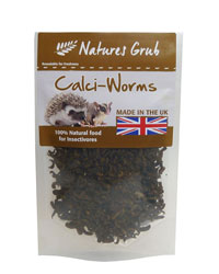 Picture of Natures Grub Dried Calci Worms 50g
