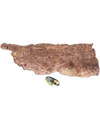 Picture of ProRep Cork Bark Flat X Large