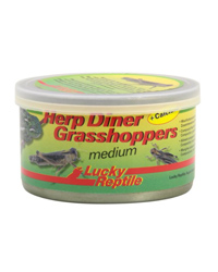 Picture of Lucky Reptile Herp Diner Grasshoppers Medium