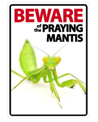 Picture of Beware of the Praying Mantis Sign