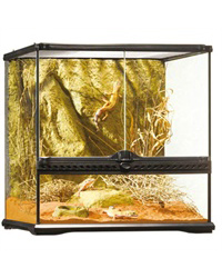 Picture of Exo Terra Glass Terrarium Small Wide 45 x 45 x 45 cm