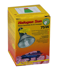 Picture of Lucky Reptile Halogen Sun Spot 75W