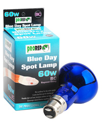 Picture of ProRep Blue Day Spot Lamp  60W Bayonet